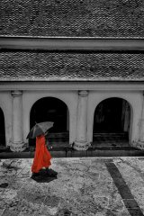 Monk in Cloister